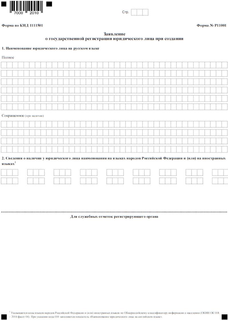 Бланк формы Р11001, титульный лист, страница 1