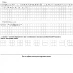 Образец заполнения Р11001 с единственным учредителем - физлицом, страница 1
